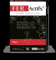 Synactifs Feractifs Gélules B/60 à MONTPELLIER