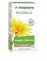 Arkogélules Piloselle Gélules Fl/45 à MONTPELLIER