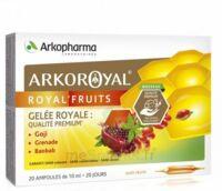 Arkoroyal Royal'Fruits Gelée royale Goji Grenade Baobab Solution buvable 20 Ampoules/10ml à MONTPELLIER