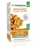 Arkogélules Fenugrec Bio Gélules Fl/40 à MONTPELLIER