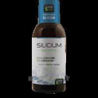Santé Verte Silicium Solution buvable Fl/500ml à MONTPELLIER
