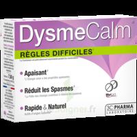 Dysmecalm Comprimés B/15 à MONTPELLIER