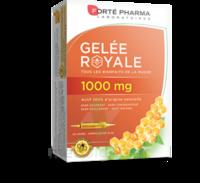 Forte Pharma Gelée Royale 1000 Mg Solution Buvable 20 Ampoules/10ml à MONTPELLIER