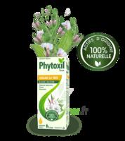Phytoxil Toux Sans Sucre Sirop Adulte Enfant +2 Ans Fl/120ml à MONTPELLIER