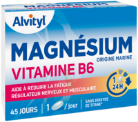 Govital Magnésium Vitamine B6 Comprimés B/45 à MONTPELLIER
